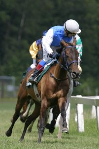 Jockeying for Safety with a Safety Management Plan--Call to Action!
